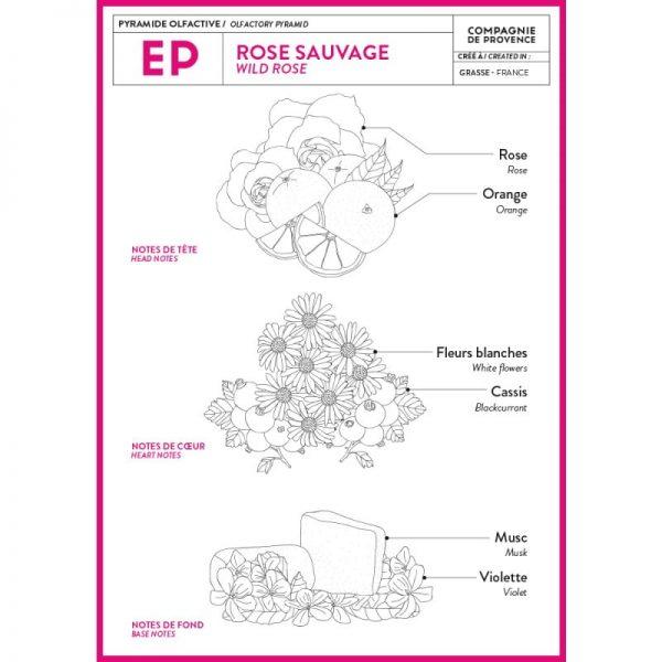 Compagnie de Provence Extra Pur Rose Sauvage Duftnuancer